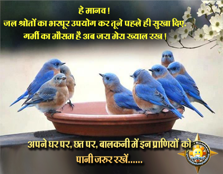 essays in hindi about birds Hindi poems short poems essay short essays (50 – 100 words) tags: 100 words essay, essays for kids 26 oct2014 0 comments an indian festival holi an.