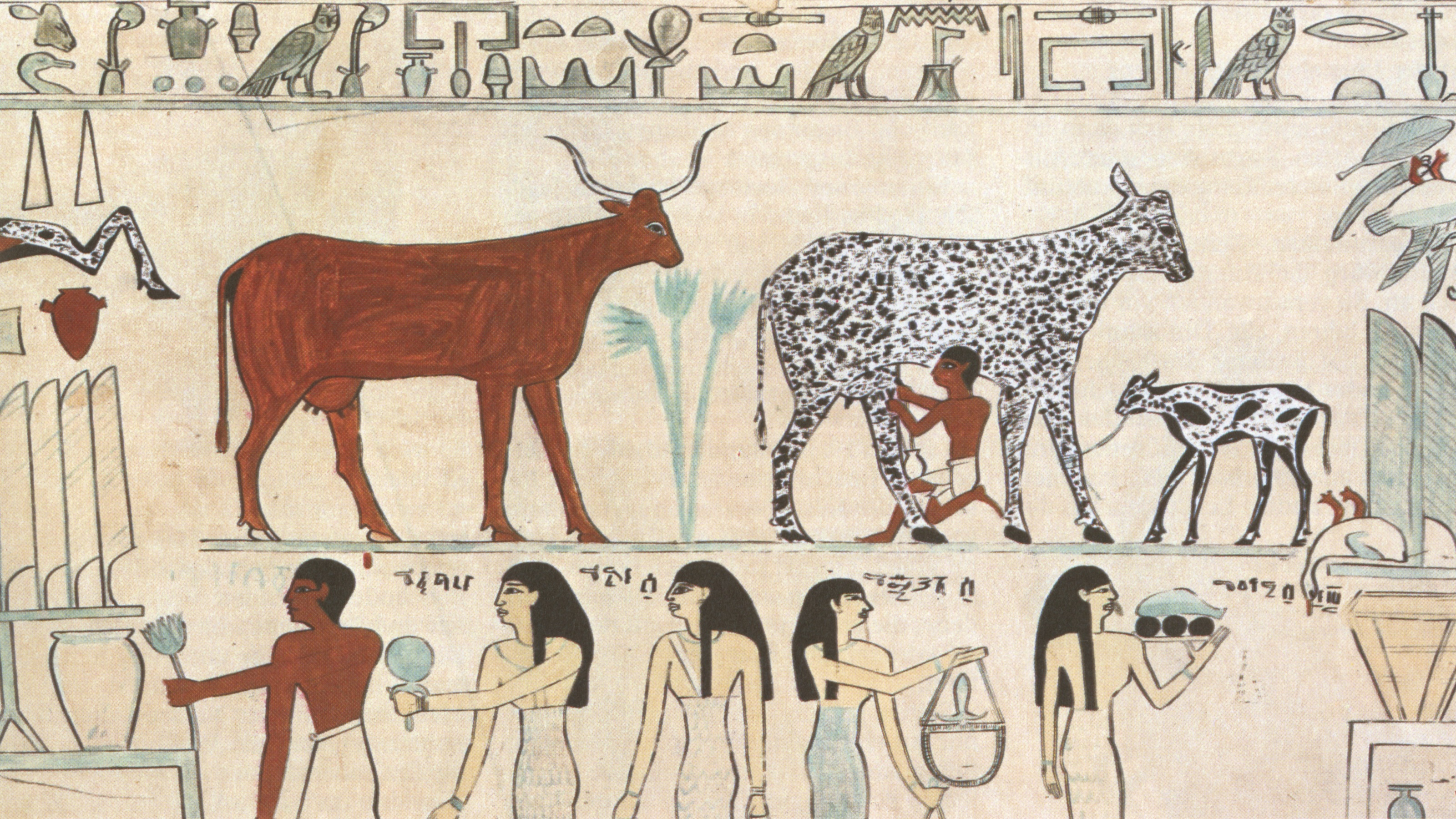 Egyptian-Domesticated-Animals