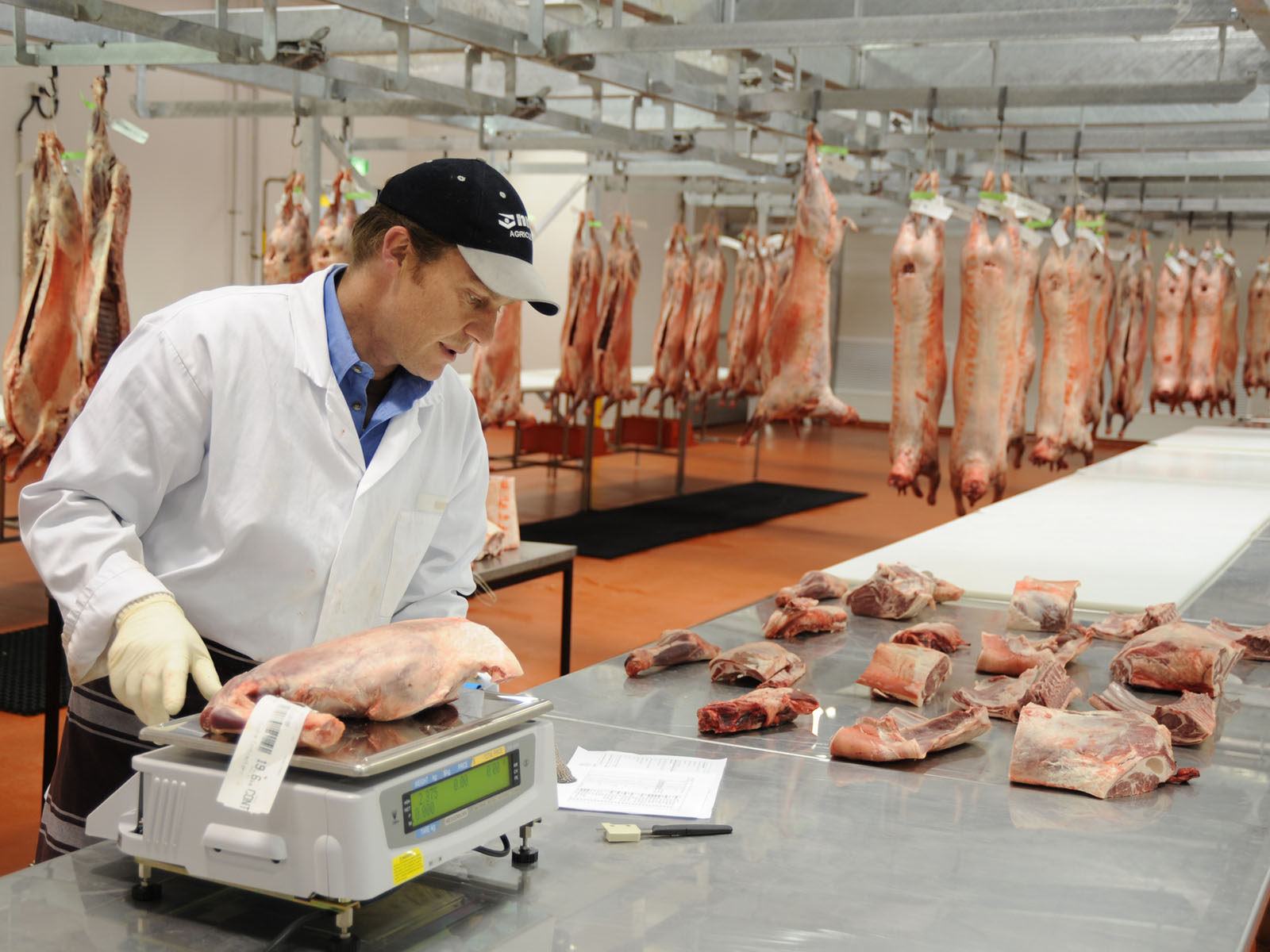 UFCW Meat Packing & Food Processing