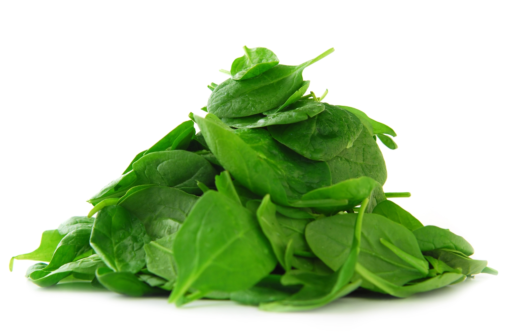 Spinach-leaves1