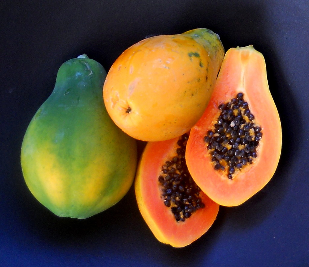 Papaya Seeds 1