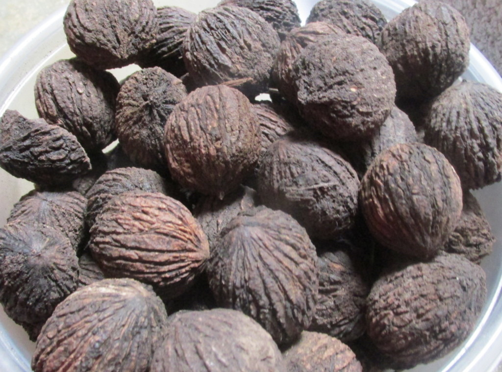 Black Wallnut