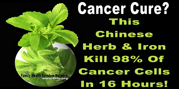 Cure Cancer In Just 16 Hours