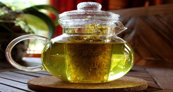 Herb Kills Cancer Cells In 48 Hours