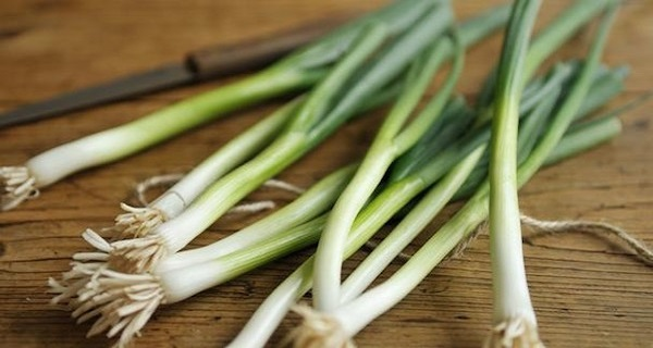 Do Not Throw Away The Green Picks of Spring Onions