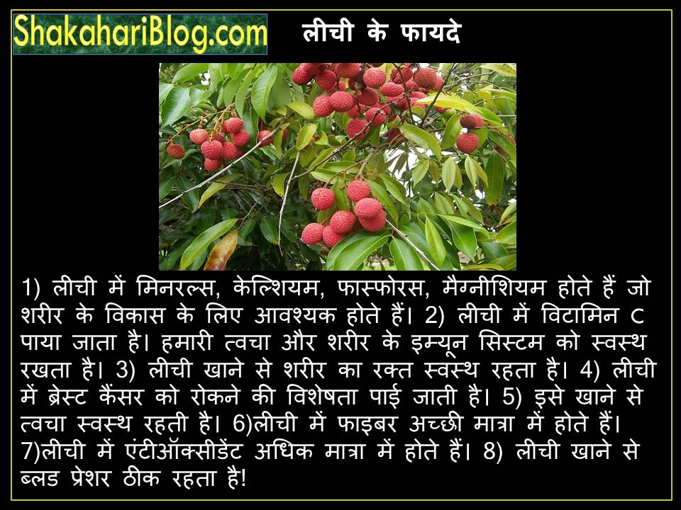 The advantages of litchi