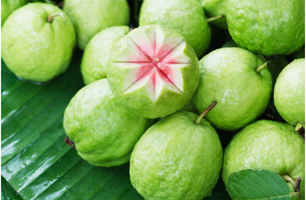 Health benefits of the guava fruit