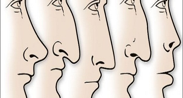 Interesting! The Shape Of The Nose Is Not A Coincidence And Says A Lot About A Person