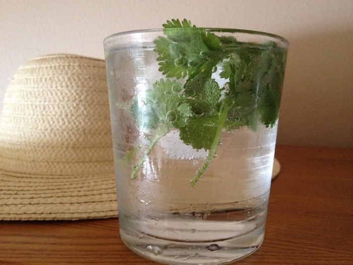 Natural Recipe For Kidney Cleansing