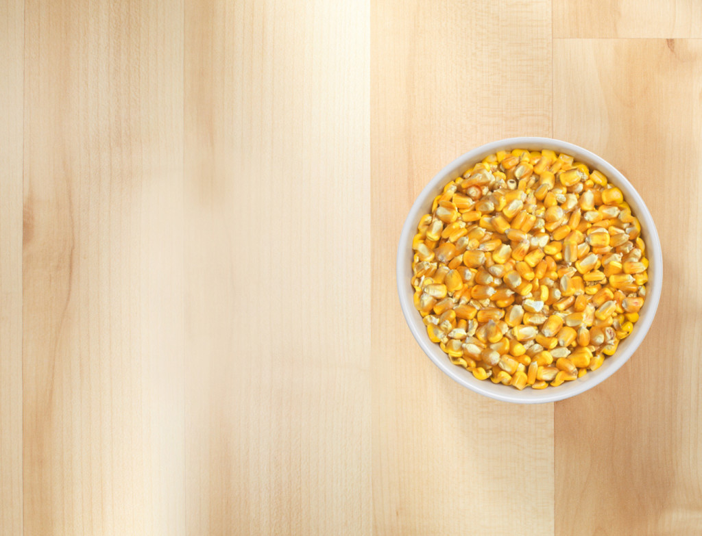 Grains Of Corn What A Passion!