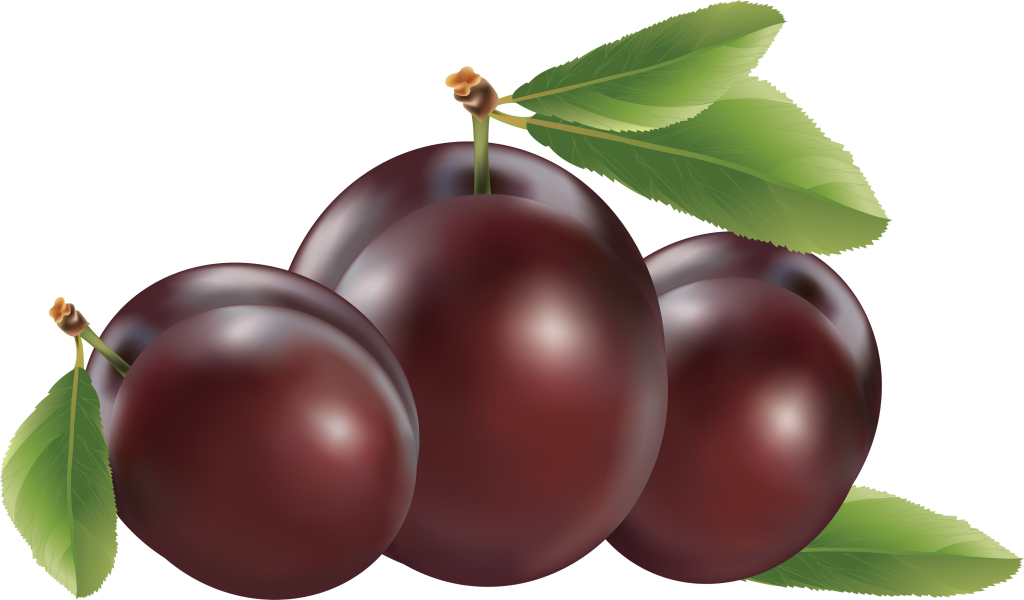 12 Plums Daily Makes Miracle For a Slim Figure!