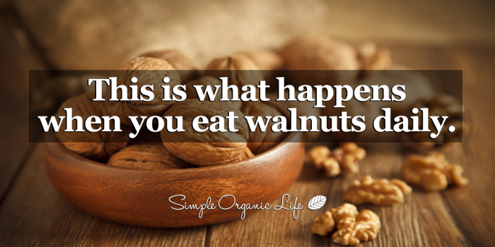 Eat 5 Walnuts And Wait 4 Hours And Then See What Happens To You!