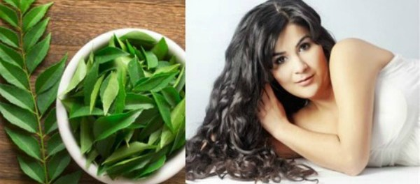 How to Grow Your Hair Fast With Curry Leaves