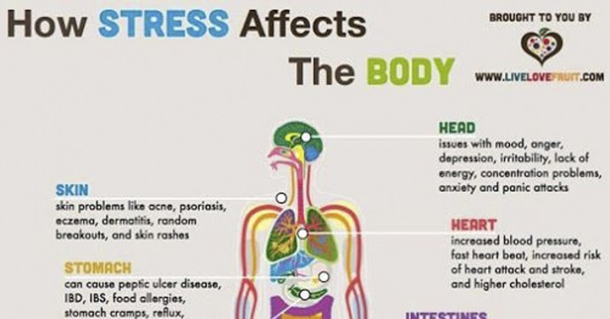 10 Invisible Things Stress Is Doing To Your Body Right Now