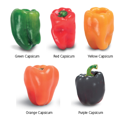 Types of capsicum