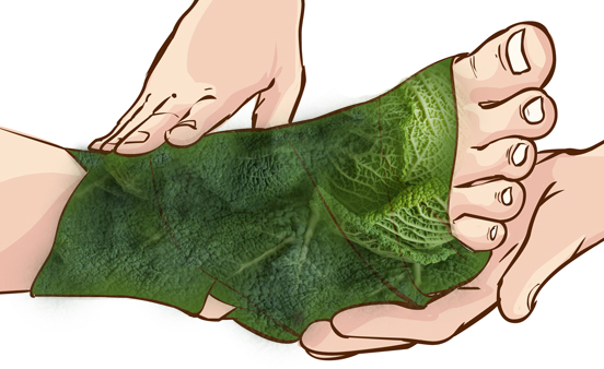 wrap-your-feet-in-cabbage-leaves-and-see-the-surprising-results