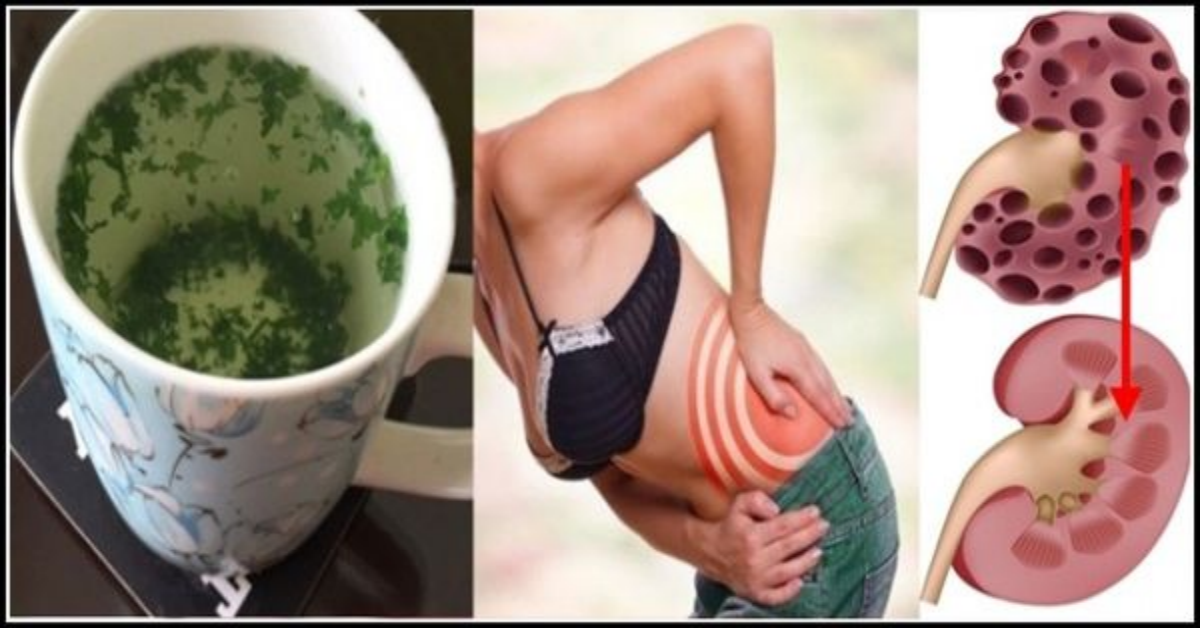 Image result for This Homemade Drink Cleanses The Kidneys Completely And Fast, Here Is How!
