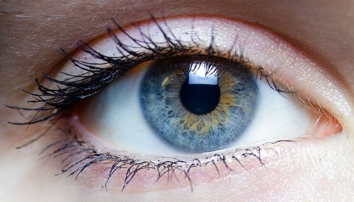 Image result for NATURAL REMEDY FOR CLEANING YOUR EYES AND IMPROVING VISION IN ONLY 3 MONTHS: HERE IS WHAT YOU NEED TO DO TO AVOID SURGERY!